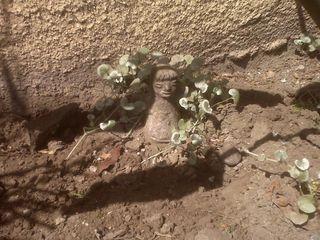 Freshly weeded stone guy